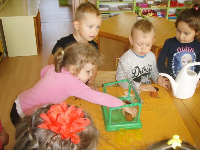 """Mažųjų gamtininkų eksperimentai Mažeikių lopšelyje – darželyje """"Eglutė"""""""