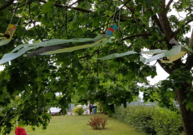 Vėjas niekadėjas, ar padėjėjas?