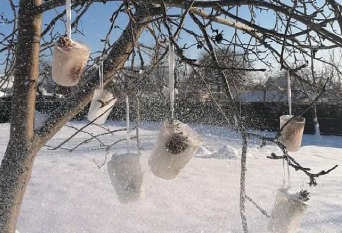 """Marijono Daujoto progimnazijos mokiniai puošė medžius """"lediniais žaisliukais"""""""