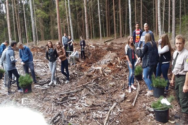 Pasaulinė medžių sodinimo diena Kazlų Rūdos pagrindinėje mokykloje