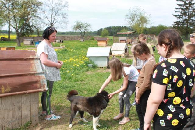 Alksniupių pagrindinės mokyklos mokinių ekskursija Šiauliuose