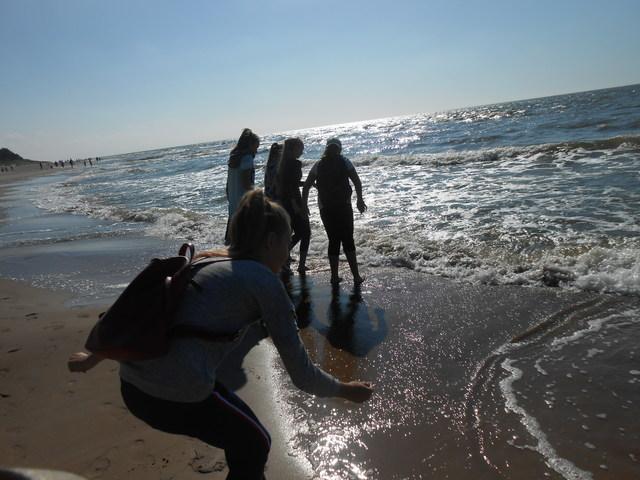 Marijono Daujoto progimnazijos ekologai prie Baltijos jūros