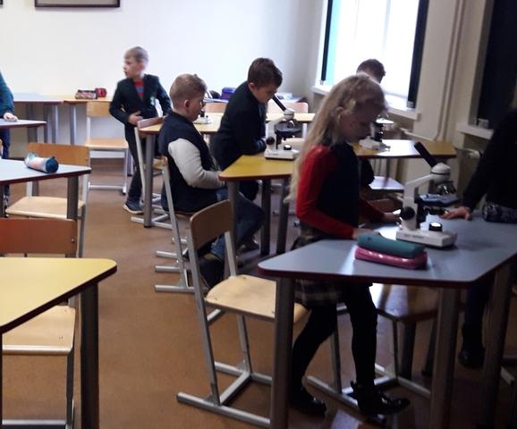 Marijono Daujoto progimnazijos mokinių pažintis su kambariniais augalais