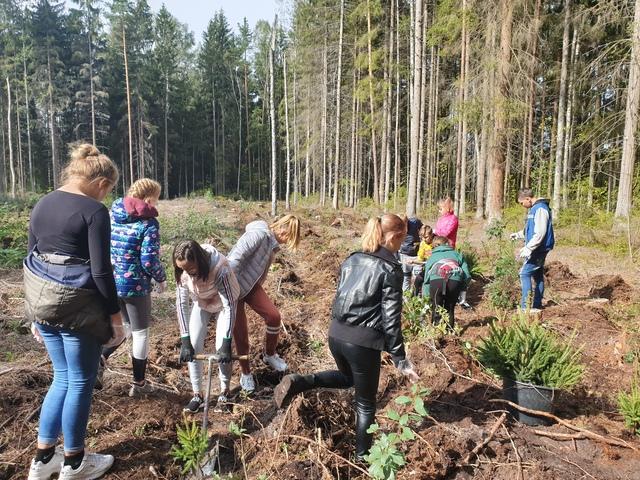 Prano Dovydaičio pagrindinė mokykla ENO medžių sodinimo akcijoje